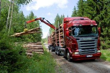Лесовоз Scania (Скания) - погрузка леса