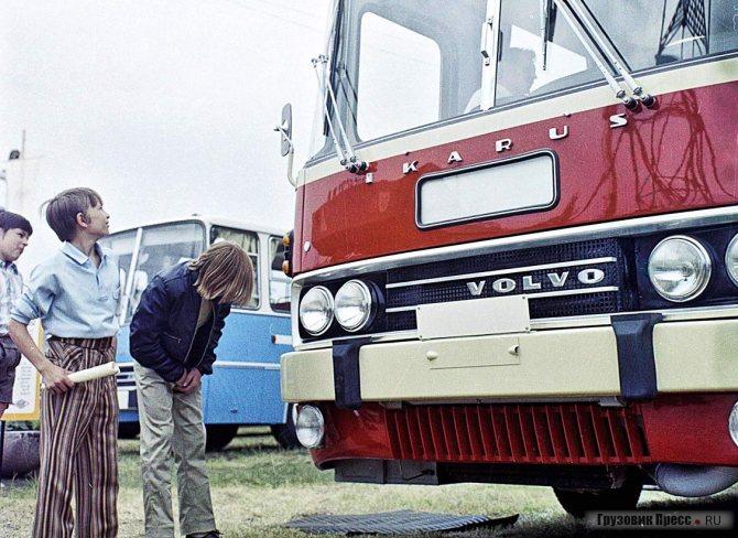 На шасси Volvo строил свои автобусы даже венгерский Ikarus