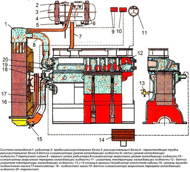 Система охлаждения дизеля Д-245