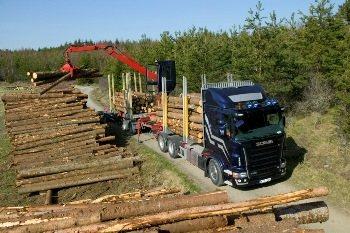 Сортиментавоз - лесовоз Скания за работой