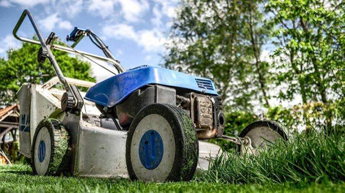срезаем газон