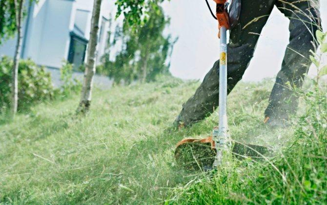 Стрижка травы с помощью триммера